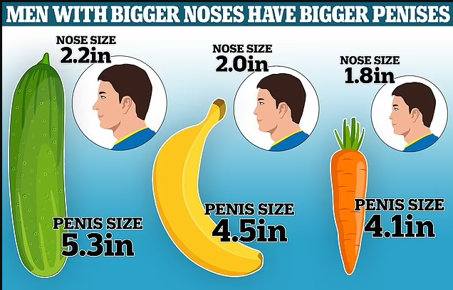 Men With Big Noses Have Bigger Penises- Scientists say